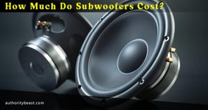How Much Do Subwoofers Cost